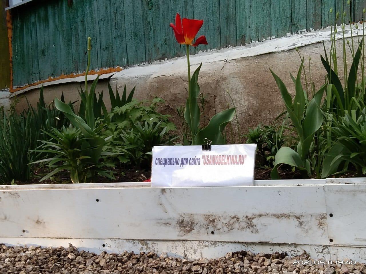 Ограждение для цветника из сайдинга