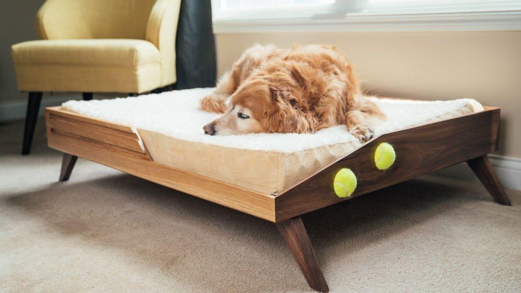 Кровать для любимой собаки