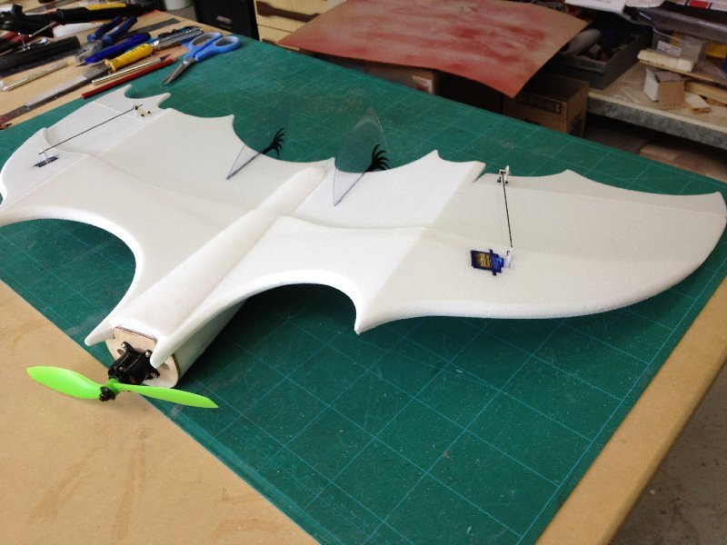 Exotic aircraft model on radio control