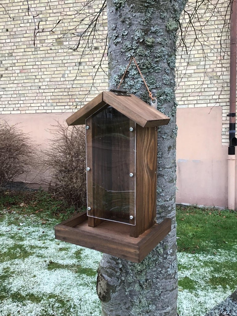 Automatic feeder for feathered guests