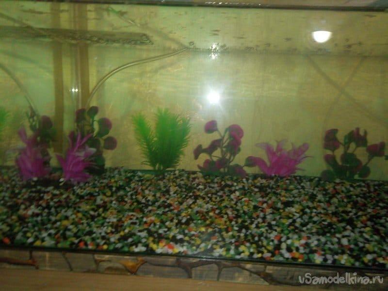 Aquarium with filling 3. Filter from scrap materials