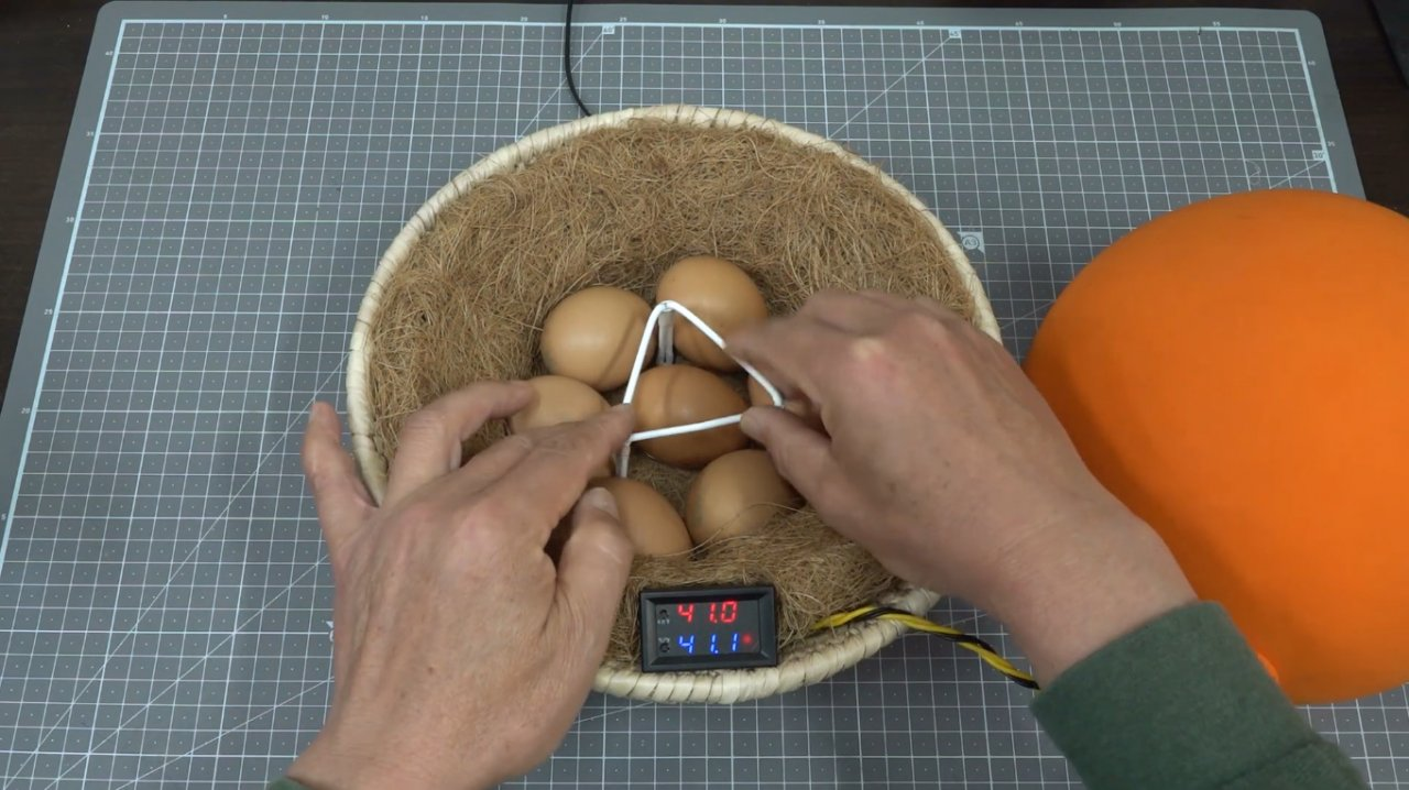 How to make a simple incubator from a balloon