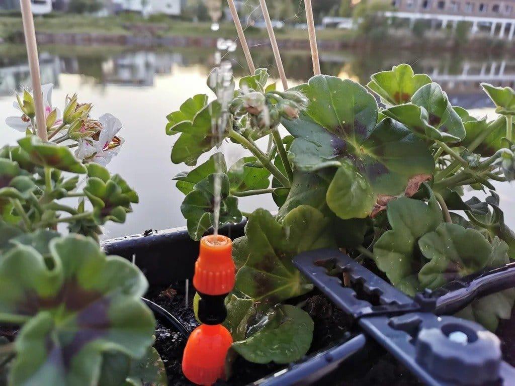 Система полива растений с управлением по Wi-Fi
