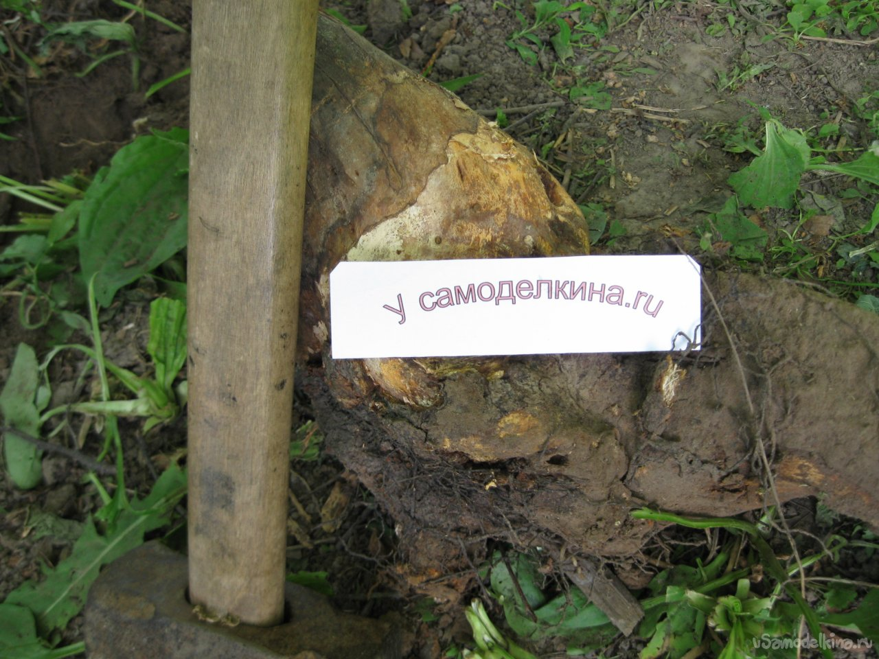How to uproot stumps using one sledgehammer