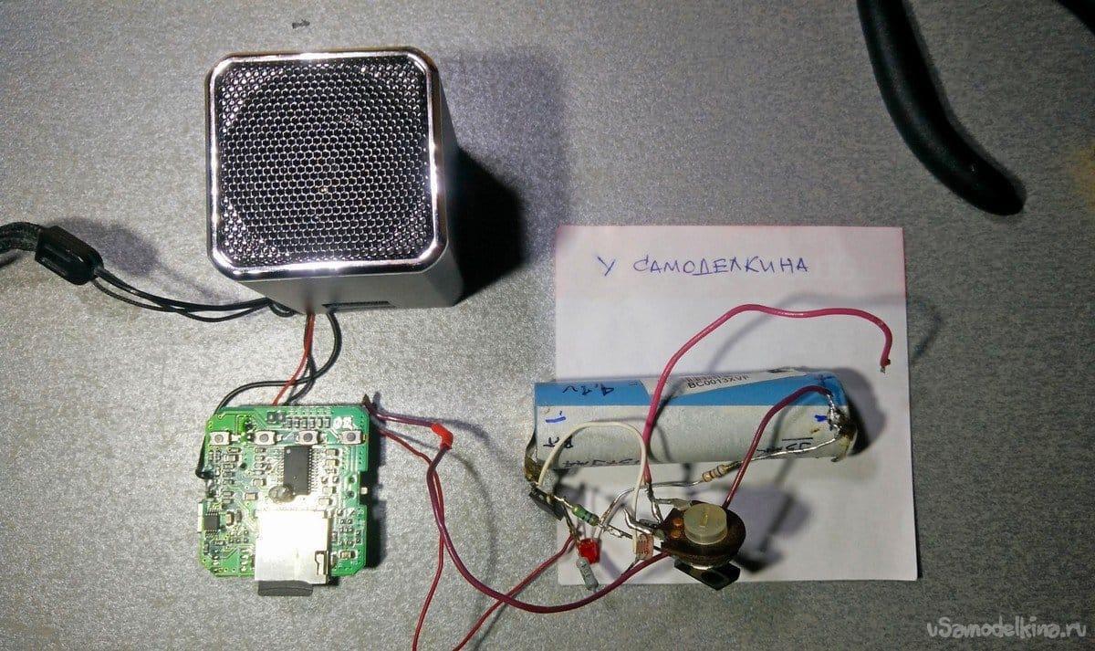 Bioacoustic bird repeller with light sensor